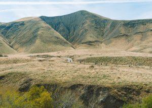 Wind-Wolves-Preserve-Bakersfield