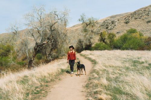 Wind Wolves Preserve San Emigdio Canyon Trail