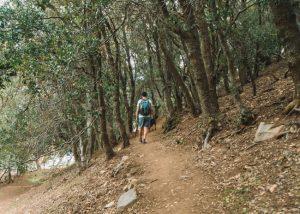 Hiking-Tehachapi-Mountain-Trail