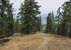 Tehachapi-Mountain-Trail-Hike