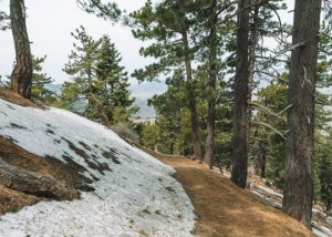 Tehachapi-Mountain-Trail-Tehachapi-Mountain-Park