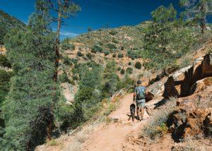 Johnsondale-Bridge-River-Trail-Sequoia-National-Forest-California
