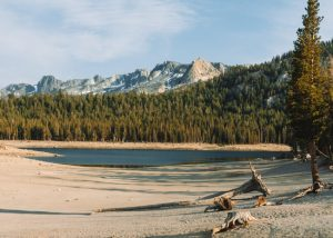 Horseshoe-Lake-Mammoth-Lakes