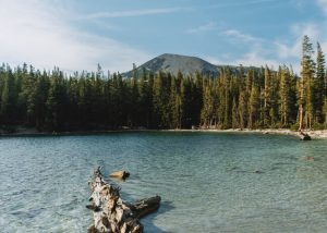 McLeod-Lake-Trail-Inyo-National-Forest