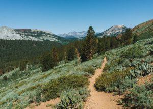 Hikes-Mammoth-Heart-Lake-Trail