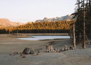 Hikes-Mammoth-Lakes-Horseshoe-Lake-Trail
