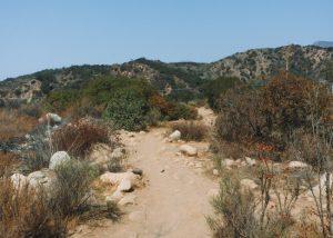 Ventura-River-Preserve-Trail-Hike
