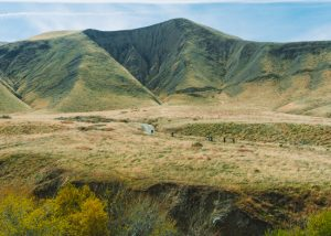 Fun-things-to-do-in-Bakersfield-CA-Wind-Wolves-Preserve