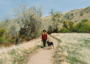 Fun-things-to-do-in-Bakersfield-Wind-Wolves-Preserve
