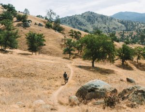 Hikes-Sequoia-National-Forest-Kern-River-Trail